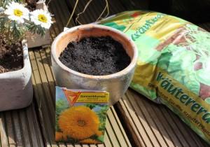 "Sonnenblumen ""Sonnengold"""